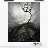 Lonely Tree under Dramatic Sky Landscape Canvas Print