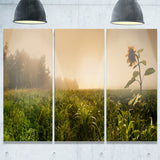 green panoramic landscape photo canvas print PT7020