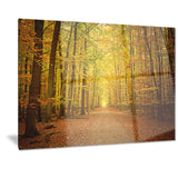pathway in green autumn forest photo canvas print PT7151