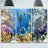 fish in coral reef seascape photography canvas print PT7213