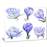hand drawn crocuses floral art painting canvas print PT7503