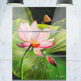 lotus and water drops floral painting canvas print PT7649