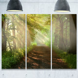 suns peeks into forest landscape photo canvas print PT8177