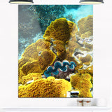 barrier reef underwater scene seascape photo canvas print PT8305