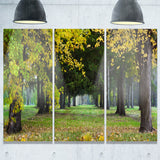 green park in autumn landscape photo canvas print PT8320