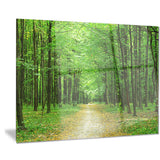 pathway in green forest landscape photo canvas print PT8333