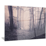 spring forest in fog landscape photo canvas art print PT8423