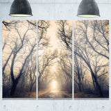 vintage autumn forest in fog landscape photo canvas print PT8456