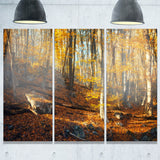 crimean mountains yellow leaves landscape photo canvas print PT8471