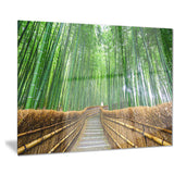 path to bamboo forest landscape photo canvas print PT8622