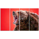 Beware of the Bear - Animal Canvas Print PT2344