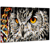 A Real Hoot - Owl Canvas Art PT2420