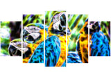 Parrot Party - Canvas Art PT2423