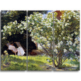 MasterPiece Painting - P.S. Kroyer Kroyer seated in the deckchair in the garden
