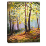 spring forest with sunlight landscape canvas art print PT6110
