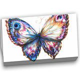 isolated butterfly animal canvas art print PT6165