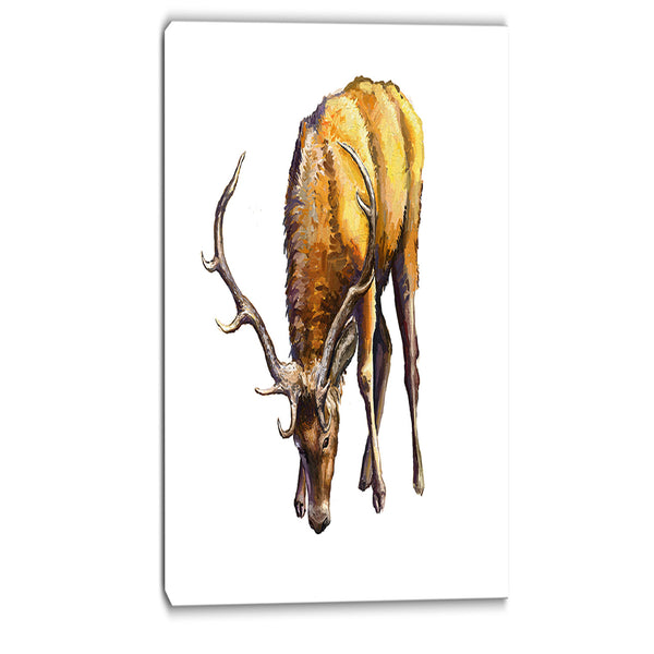 male deer illustration art animal canvas print PT6191