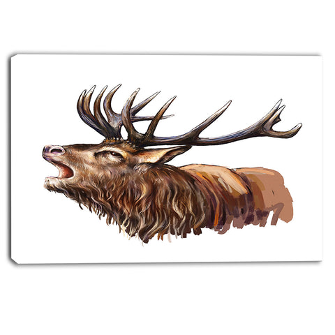 deer head illustration art animal canvas print PT6196