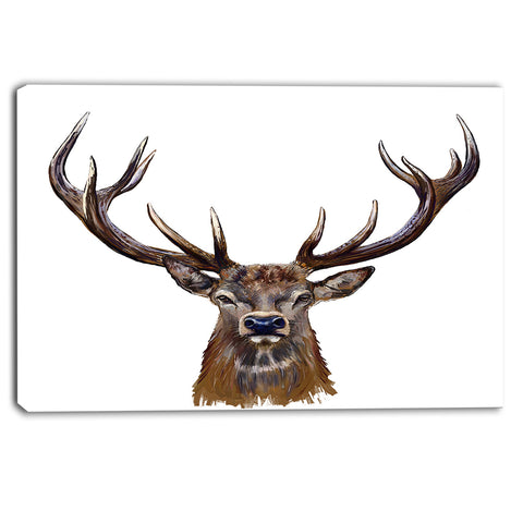 deer head in front illustration animal canvas art print PT6209