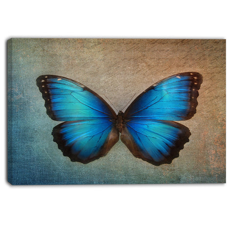 blue vintage butterfly floral canvas art print PT6282