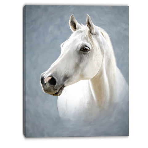 a white horse alone animal canvas art print PT6390