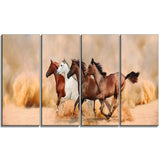 herd gallops in sand storm landscape photo canvas print PT6428