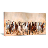 horses herd in sand storm landscape photography canvas print PT6444