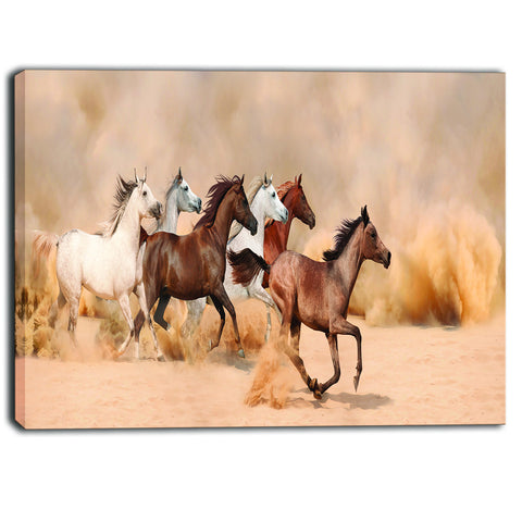 herd gallops in sand storm photography canvas art print PT6456