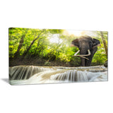 erawan waterfall with elephant photography canvas art print PT6475