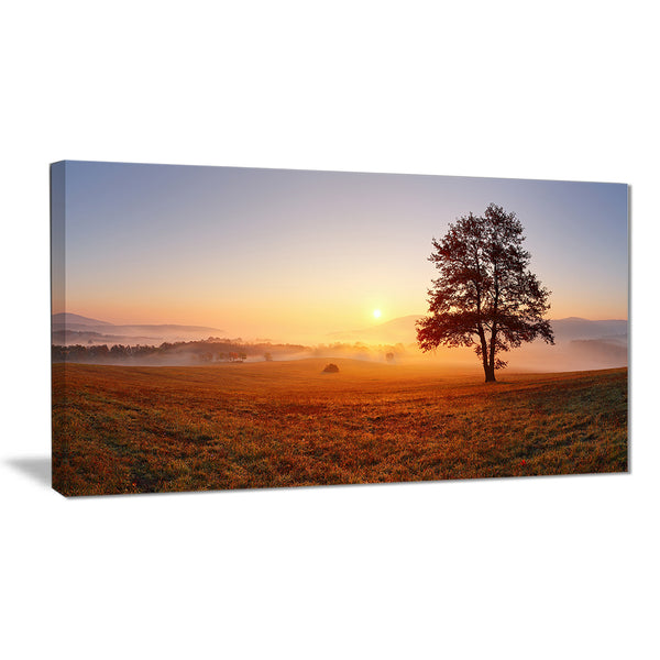 lonely tree at sunset landscape photography canvas print PT6485