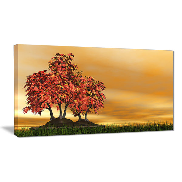 bonsai landscape photography canvas art print PT6492