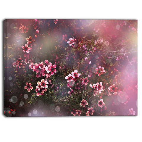 sakura japanese cherry photography floral canvas print PT6505