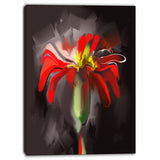 abstract red flower floral art print on canvas PT6671