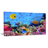 coral colony and coral fishes seascape photo canvas print PT6825