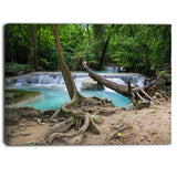 tropical forest scenery photo canvas print on canvas PT6873