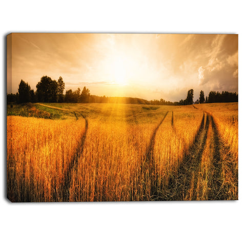 wheat field at sunset panorama photo canvas art print PT6945