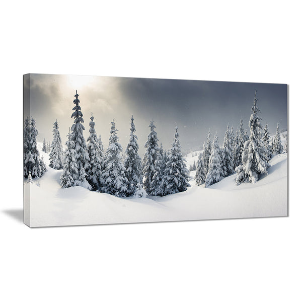 winter landscape photo canvas wall art print PT7010