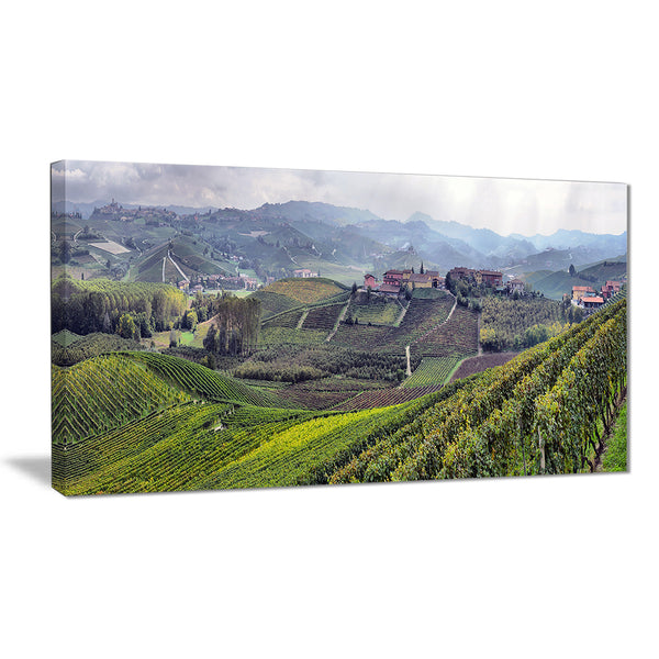 vineyards in italy panoramic photo canvas print PT7011