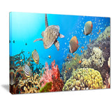 undersea panorama photography canvas print PT7066