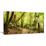 rainforest panorama landscape photo canvas print PT7141