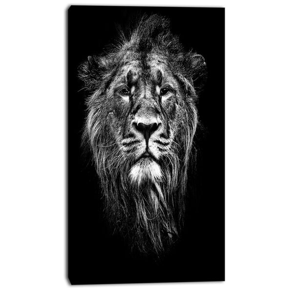 male asiatic lion animal digital art canvas print PT7163