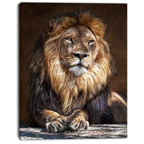 king lion with lighted face animal art print on canvas PT7166