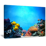 underwater scene seascape photography canvas art print PT7218