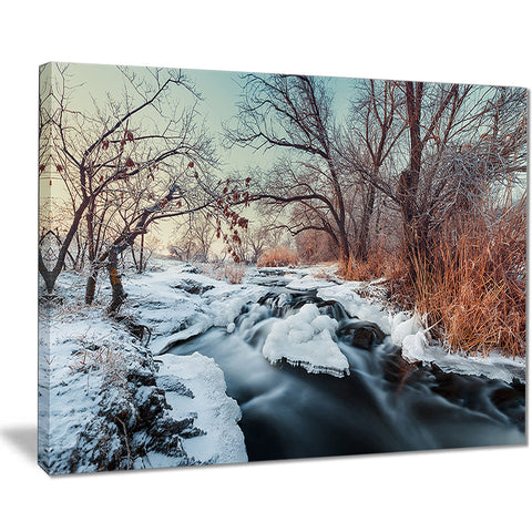 ukraine winter forest landscape photo canvas print PT8170