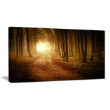 sunrise in foggy forest landscape photo canvas print PT8178