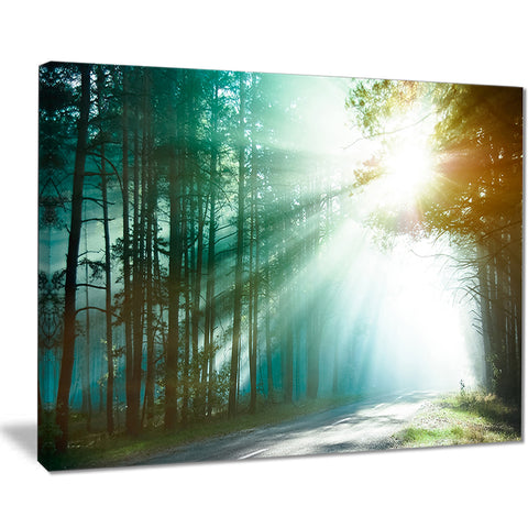 magic blue forest landscape photo canvas print PT8180