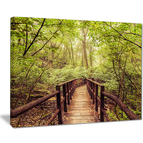 jungle in vintage style landscape photo canvas print PT8291