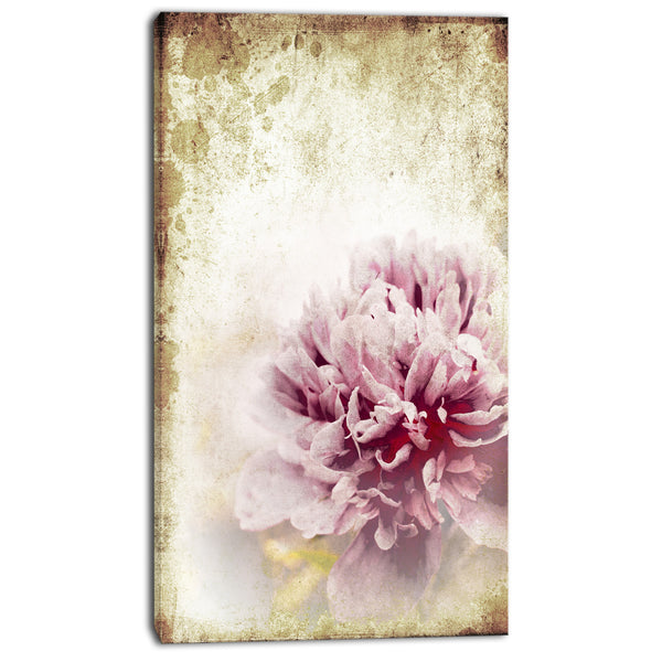 pink peony in vintage style floral digital canvas art print PT8294