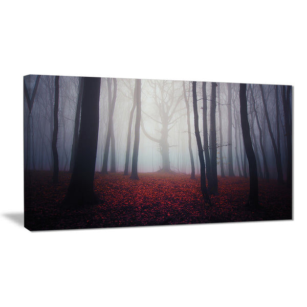 dark spooky misty forest landscape photo canvas art print PT8316