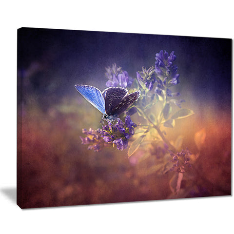 vintage butterfly digital art floral canvas print PT8335
